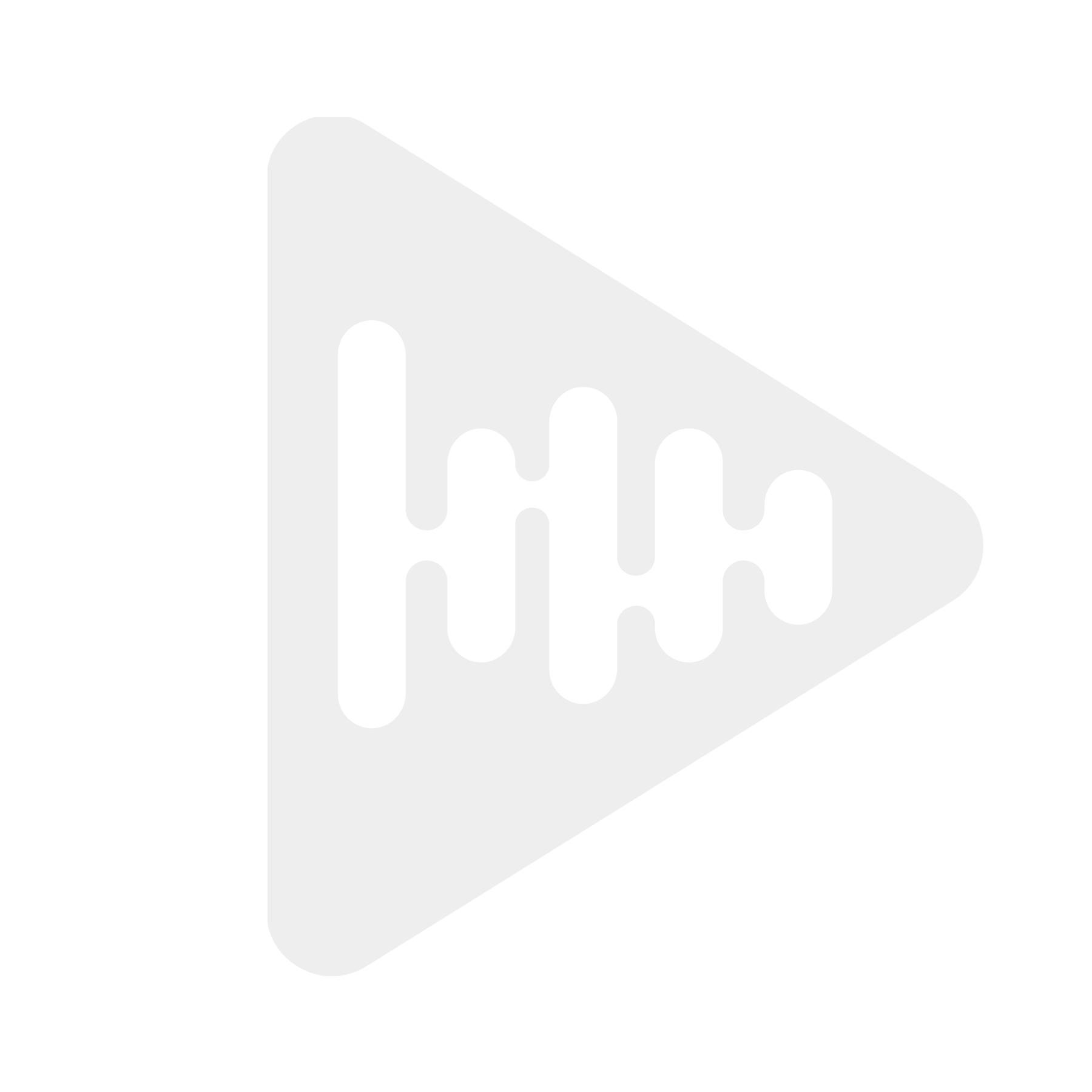 Skoddejuice Apple Stark Aroma