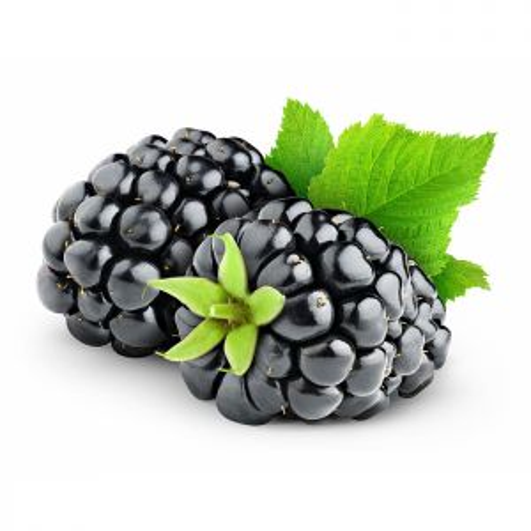 Skoddejuice Blackberry Aroma